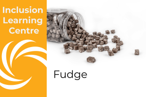 Inclusion Learning Centre E-Course Topic Header: Fudge - includes image of spilt jar of chocolate fudge cubes