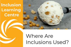 Inclusion Learning Centre Header - Where Are Inclsuions Used? Image of peanut and brittle ice cream in scoop on grey tile backdrop with brittle balls and peanuts scattered by scoop